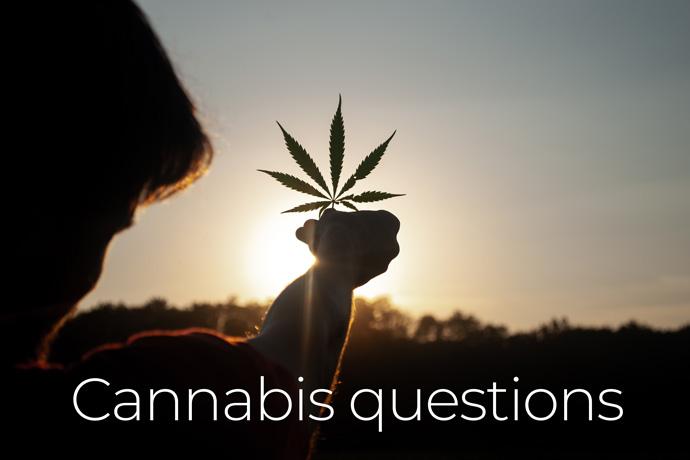 is cannabis oil legal in Thaland